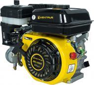 Двигун бензиновий Кентавр ДВЗ-200БГ
