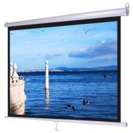 Экран ATRIA MW-HD-110D