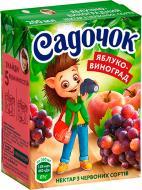 Нектар Садочок Яблуко-виноград із червоних сортів 200 мл