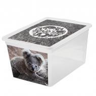 """Ящик для зберігання BranQ 7315.2 X-BOX з малюнком """"коала"""" 15 л"""