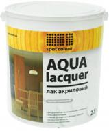 Лак акриловий Aqua Lacquer Spot Colour шовковистий мат 2.5 л