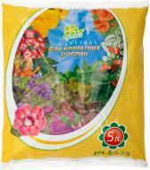 Субстрат Florio для кімнатних рослин 5 л