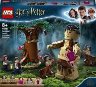 Конструктор LEGO Harry Potter Заборонений ліс: зустріч Амбридж 75967