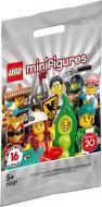 Конструктор LEGO Minifigures Минифигуры Серия 20 71027