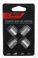 Набір Auto Assistance ковпачки на ніпель AA404-4S 4 шт