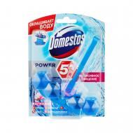 Туалетний блок Domestos Power 5 Видимий захист Квітковий букет 53 г