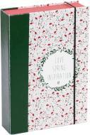Коробка з резинкою COOVERBOX М 21х15х4