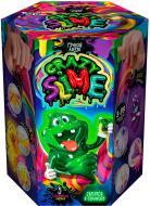 Набір для дослідів Danko Toys Crazy Slime Лизун своїми руками (рус.) SLM-01-01