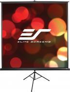 Проекційний екран Elite Screens T100UWHWH