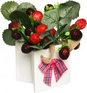 Декоративні ягоди в кашпо 14х7 см 70-309