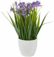 Растение искусственное Петушки в керамическом горшке 8х22 см