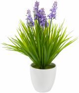 Растение искусственное Лаванда XD14-67LT-P