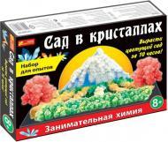 Набір для дослідів Ранок Сад в кристалах великий 12138011Р 262