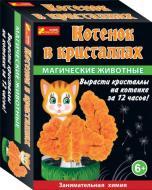 Набір для дослідів Ранок Магічні тварини. Котик у кристалах 12100326Р 264