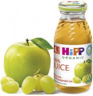 Сік Hipp Яблучно-виноградний 200 мл 9062300102472