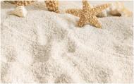 Плитка Golden Tile SUMMER STONE Holiday бежевий декор №4 В41341 25x40