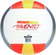 Волейбольний м'яч Avento 16VE-OGG р. 5