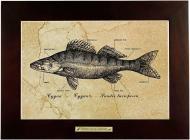 Картина Fish-Point