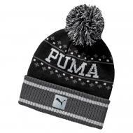 02105901 Шапка Home team beanie чорн. one size Puma AW1617