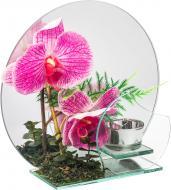 Свічник з орхідеєю EBA14A014