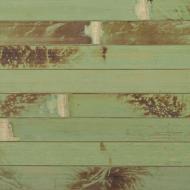 Шпалери бамбукові LZ-0816А  17/11 мм 0,9 м зелені обпалені
