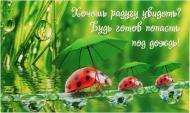 Картина-открытка KL007 13x22 см KL007