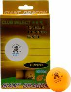 М'ячі для настільного тенісу Giant Dragon TRAINING (6)