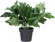 Квіткова композиція штучний Плющ у вазоні зелений PFC(NL)-717A