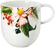Чашка Brillance 340 мл 00200982 Rosenthal