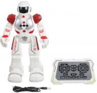 Интерактивный робот Amwell Bot на инфракрасном управлении BR1119612/wh-rd