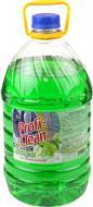Засіб для ручного миття посуду Profi-Clean Яблуко 5л
