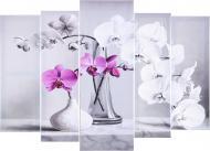 Картина модульна 5 частин Орхідеї 118x80 см