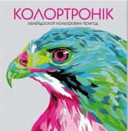 Книга-розмальовка Лорен Фарнсворт «Колортронік. Калейдоскоп кольорових пригод» 978-966-97632-8-0