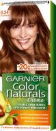 Крем-краска для волос Garnier Color Naturals №6.34 карамель 110 мл