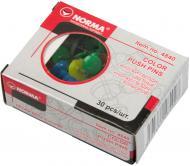 Кнопки-цвяшки NORMA 30 шт. 4840