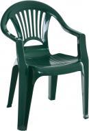 Стілець пластиковий Алеана Луч 78x58x57 см зелений