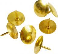 Кнопки канцелярские Axent омедненные 50 шт. 4202-A