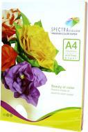 Папір кольоровий Spectra Color A4 80 г/м Rainbow Pack Deep IT 82 А 5х10/50 аркушів різнокольоровий