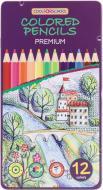 Олівці кольорові 12 кольорів шестигранні Premium