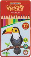 Олівці кольорові 12 кольорів тригранні Premium CF15178