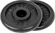 Набір Energetics Cast Iron Disc Pair диски для грифа 1 кг 2 шт. 1 кг 108792