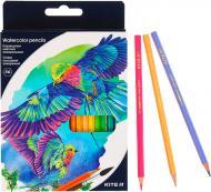 Олівці акварельні кольорові 36 шт