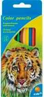 Олівці кольорові двосторонні 12 шт KITE