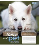 Зошит шкільний Dog loyality А5/12 у клітинку 1 вересня