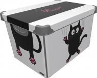 Контейнер для зберігання пластиковий Qutu SB17000242 Meow Black 20 л 240x390x290 мм
