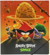 Папка  Angry Birds Space В5 Cool For School