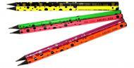 Олівець чорнографітний 22654 VGR