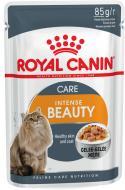 Корм Royal Canin Intense Beauty в желе 85 г