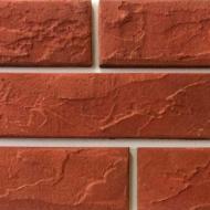Плитка бетонна пряма Золотой Мандарин Рейнбоу Россо 0,5 кв.м