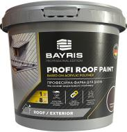 Краска для крыш акриловая Bayris PROFI ROOF PAINT мат графит 1кг